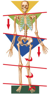 pelvis out of alignment
