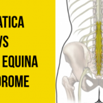 Is it a Lumbar Radiculopathy or a Cauda Equina Syndrome?